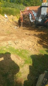tree removal Guernsey Bernie's Gardening Services