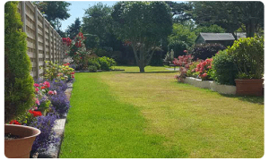 garden maintenance company in Guernsey