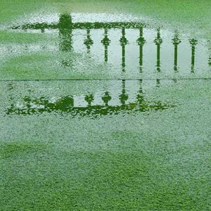 Flooded artificial grass that shows what happens when you don't properly fit artificial grass