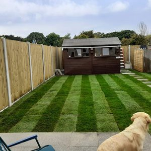 Picture of Kayla Skilletts garden re-turf and new fence in Guernsey.